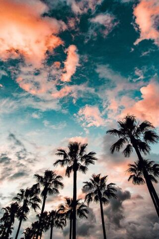 Günbatımı Sahili