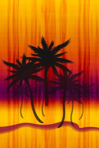 Summer Palm Trees