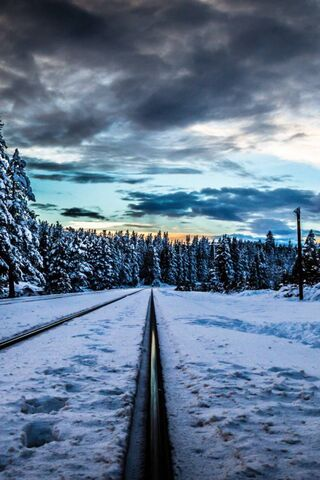रेल मार्ग