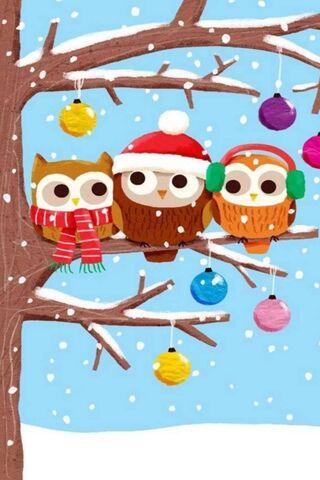 Совы Рождество