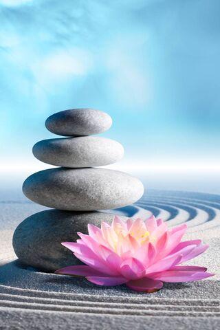 Zen Stones and Lotus
