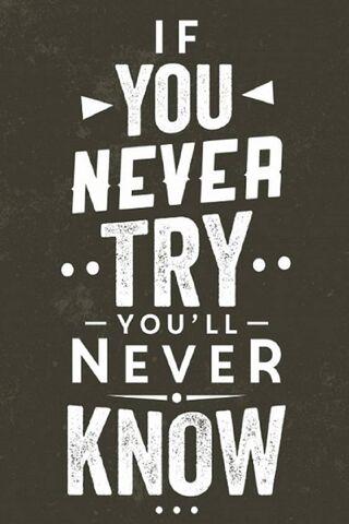 Nếu bạn không bao giờ thử