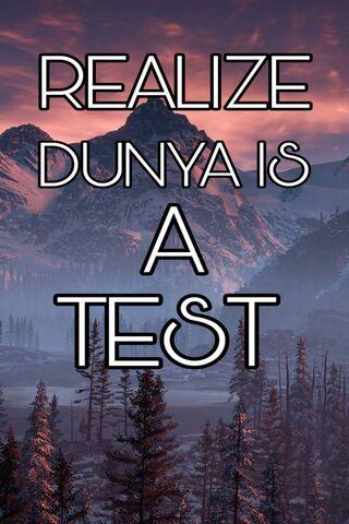 Islamic Sayings Test