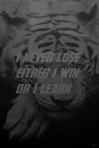 Nunca perde