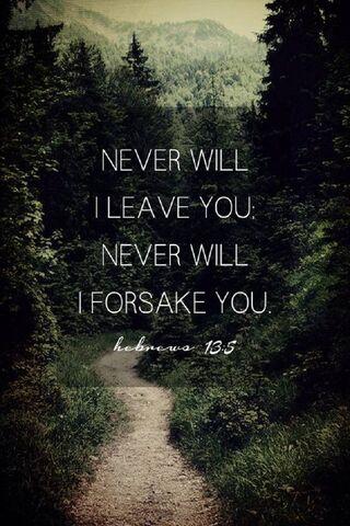 신은 결코 버리지 않는다