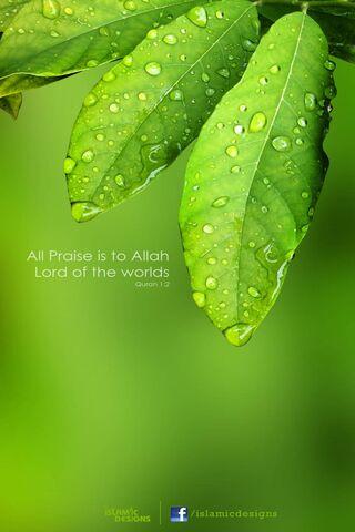 Segala puji bagi Alloh