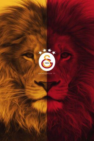 शेर असलान जी.एस.