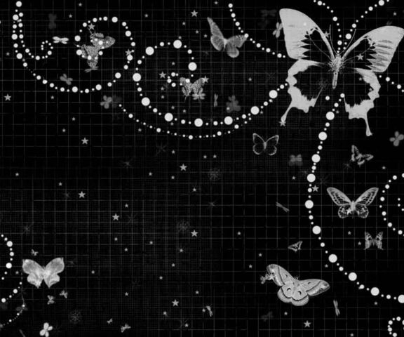 Black Butterfly Wallpaper Download To Your Mobile From Phoneky