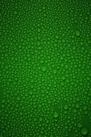 Verde húmedo