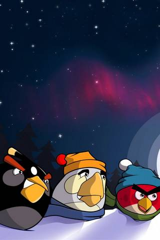 ANGRY BIRDS WINTER